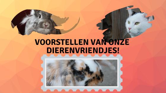 Dierenvriendjes voorstellen