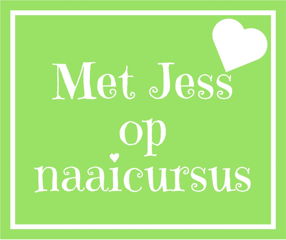Naaicursus