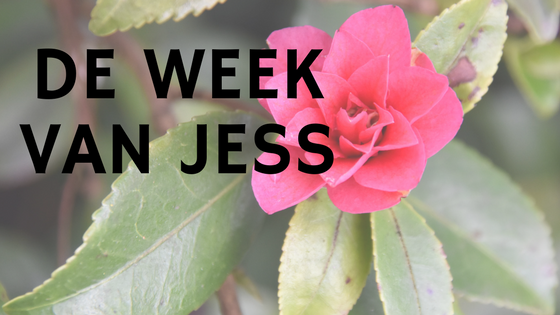De week van Jess
