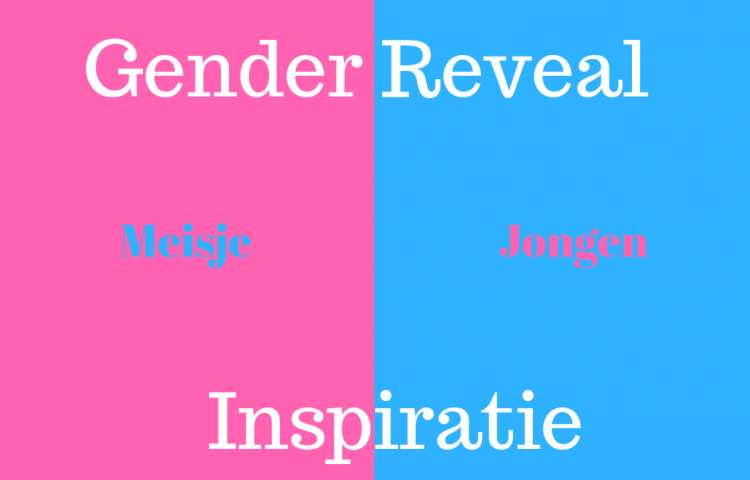 Gender reveal inspiratie tips